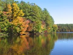 Fall at Lake Johnson