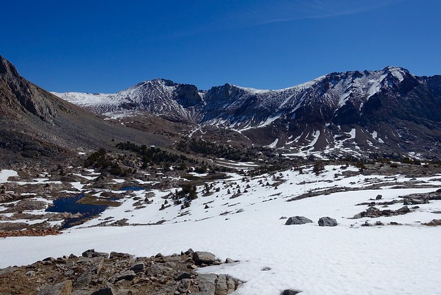 Unexpected snowfield below Pinchot Pass, m805