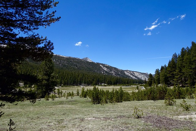 Colby Meadow, m847