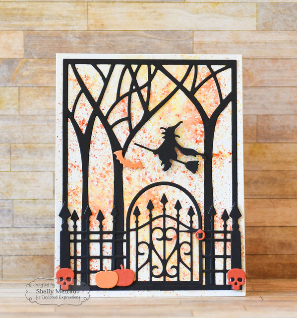 Wrought Iron Gate & Fence