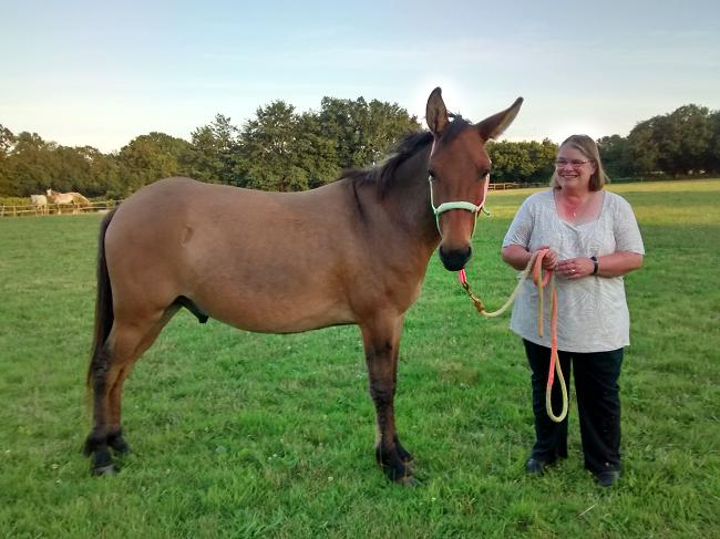Mum and Mule