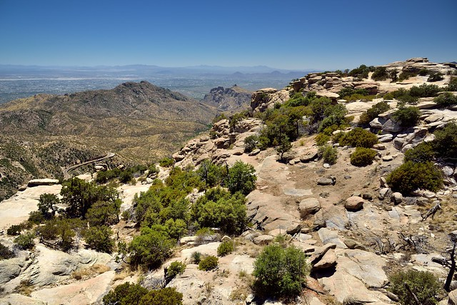 A Scenic View at Windy Point Vista