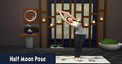 Yoga 4 Half Moon Pose