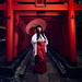 Miko - Shrine Maiden