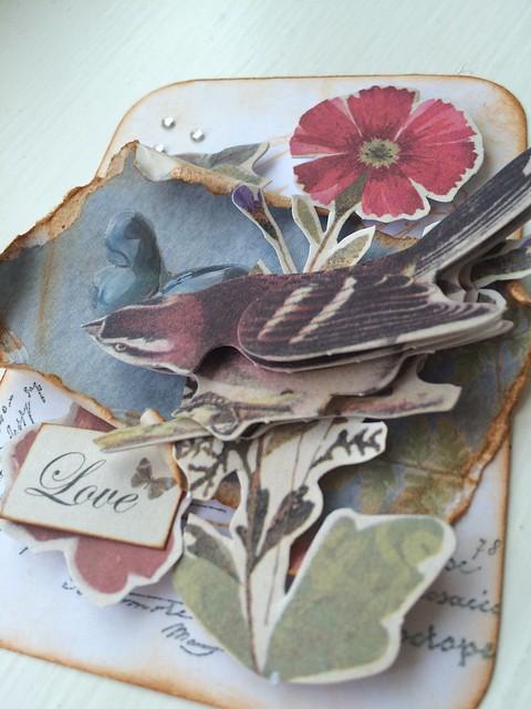 ATC Nature's Gallery closeup by StickerKitten