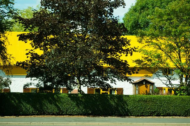 20150704-15_Yellow roofed cottage_Thurlaston