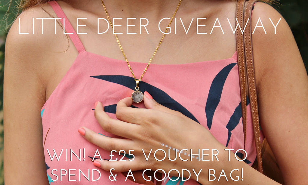 LITTLE DEER GIVEAWAY