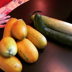 vegetable, produce, food, winter squash, gourd,