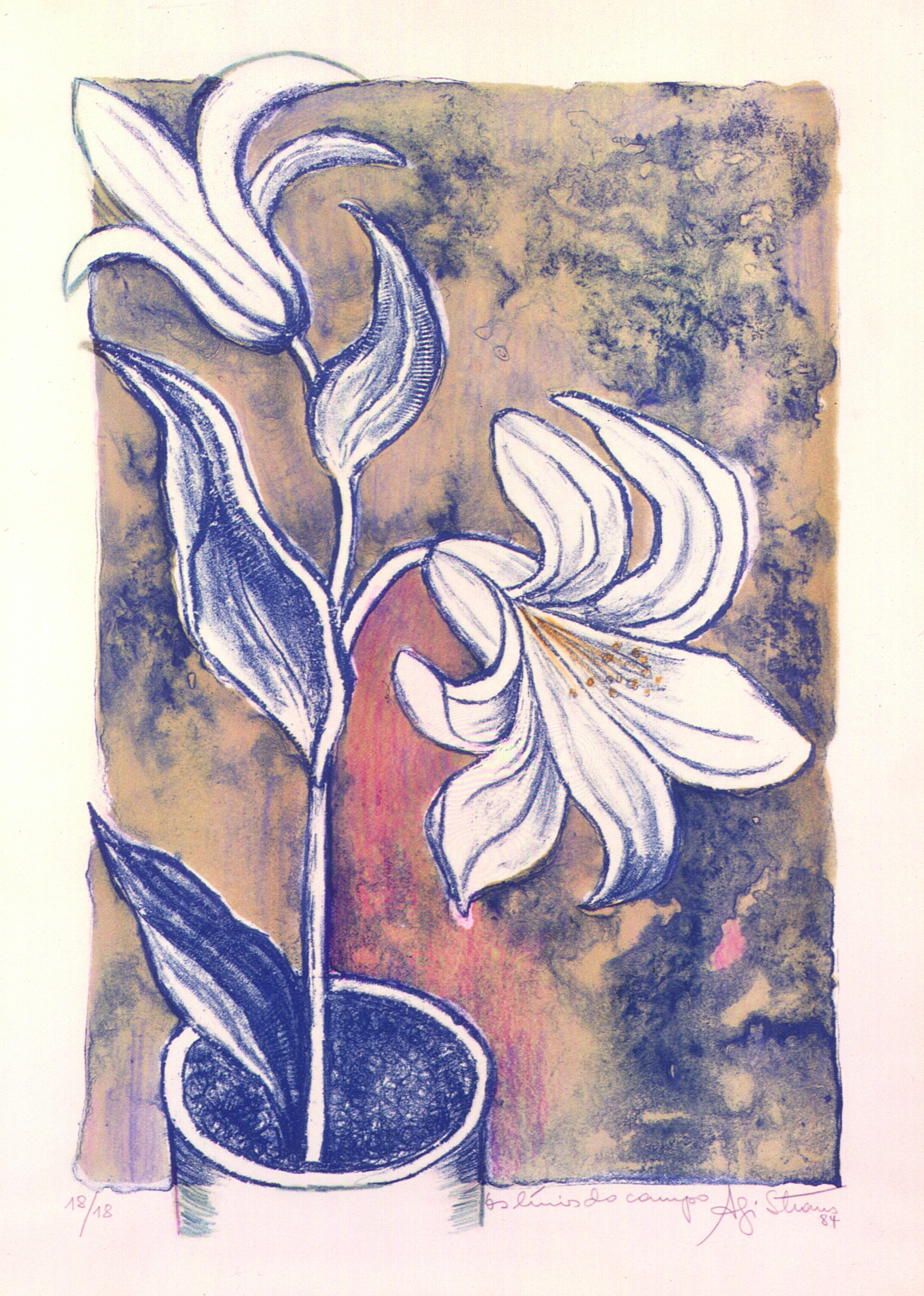 Os Lírios do Campo Autor:Agathe Straus Ano: 1984 Técnica: Calcografia. Ponta-seca (18/18) Dimensões: 42cm x 28cm