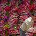 Flower Man by Patberg