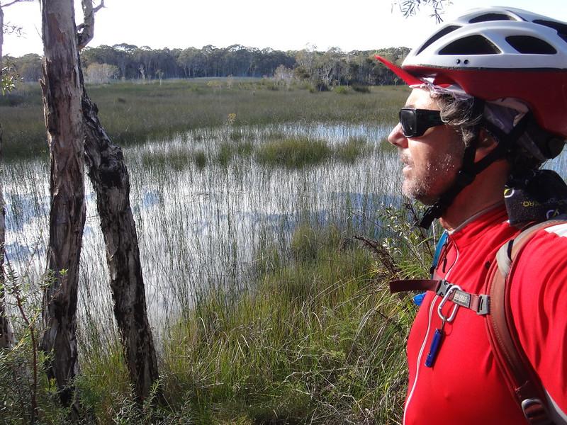 Jabiru Swamp
