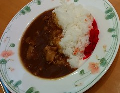 produce(0.0), stew(1.0), curry(1.0), steamed rice(1.0), japanese curry(1.0), meat(1.0), food(1.0), dish(1.0), southeast asian food(1.0), soup(1.0), cuisine(1.0), asian food(1.0), gumbo(1.0),