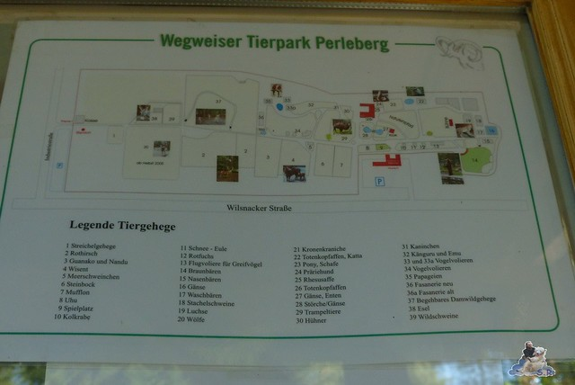 Tierpark Perleberg 09.08.2015 28