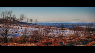 Frosty hillside in the morning sun with mountains on the horizon