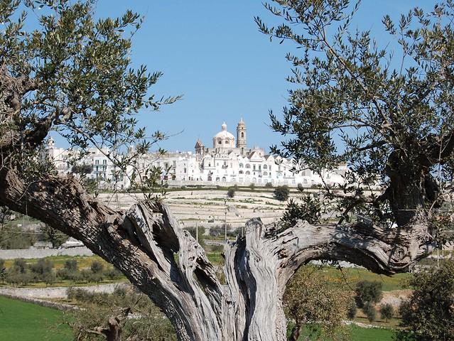 valle d itria_panorama
