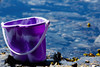 Purple bucket by pootlepod