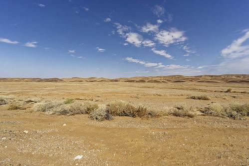 negev hadarom israel wüste