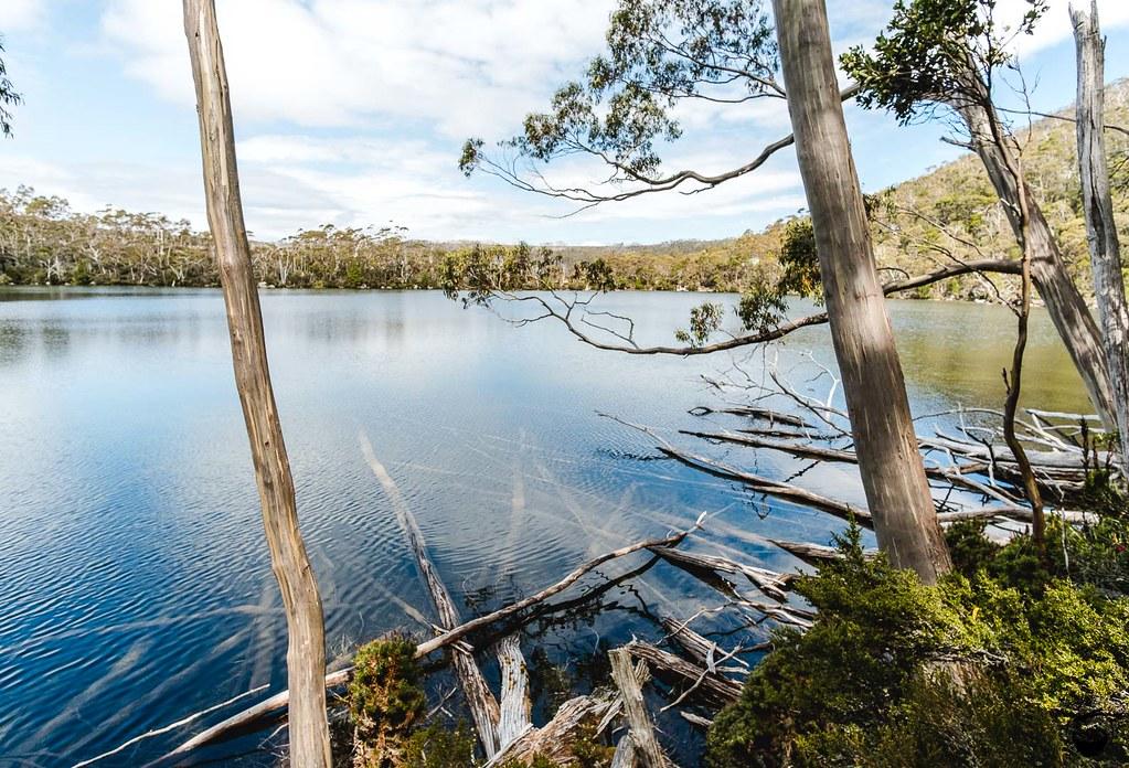 Tasmania 2016-114