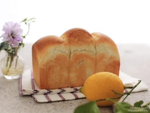 自家製レモン酵母の食パン 20170112-IMG_1081 (3)-1