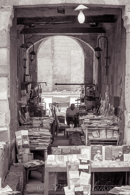 Bookseller, Cairo, Egypt 2015