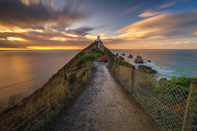 Pathway To Nugget Point Lighthouse
