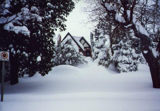 Christmas Village house on Bay Street. Photo Kevin Lintern