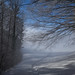 #winter by Toni_V