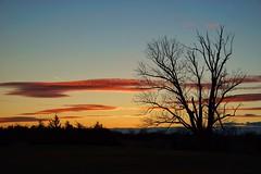 28/365 - Sunset