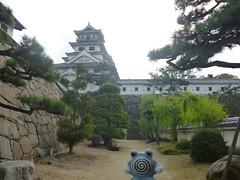 Poliwhirl in Imabari, Ehime 7 (Imabari castle)