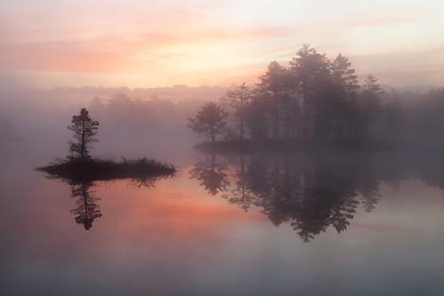 2 Islands of the Bog Lake