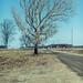 road by Marty Hogan