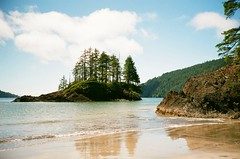 San Josef Bay in Cape Scott Provincial Park - 10 (of 12) - Contax T2 Compact with Carl Zeiss 1:2.8 f=38 mm T* and Fuji ISO 200 Superia Film