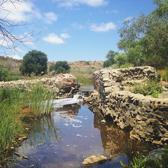 One of the first irrigation projects on the US west coast: Old Mission Dam on the San Diego River #sandiego #historicalsite #missiontrails #oldmissiondam