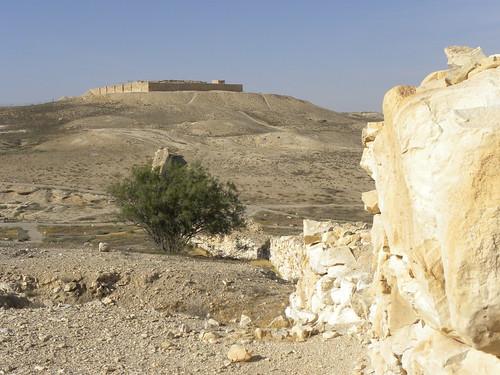 archaeology cities negev arad 2011 telarad ianwscott israeltour2011