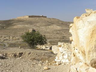 תמונה של תל ערד. archaeology cities negev arad 2011 telarad ianwscott israeltour2011