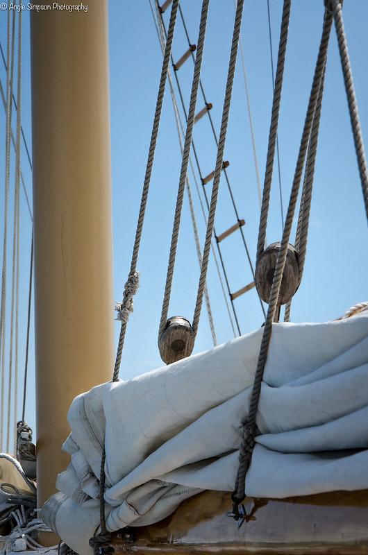 sail (1 of 1)