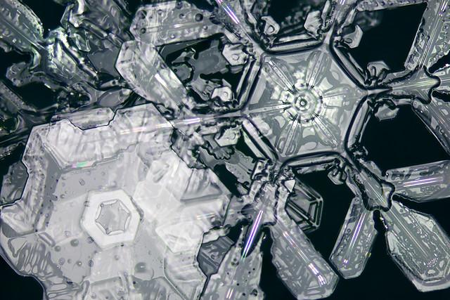 Complex snow crystals in dark field