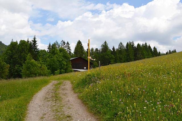 Open path, near Mosern, Austria