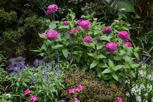 FilipWolak-LSBID-Gardens-8206