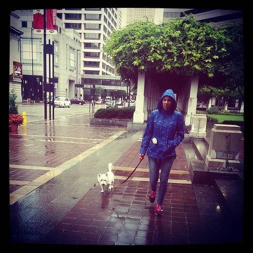 @genmae5 and Oscar out on a evening dog walk in downtown Cincinnati.
