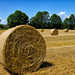 Rolled Bale of Straw #2