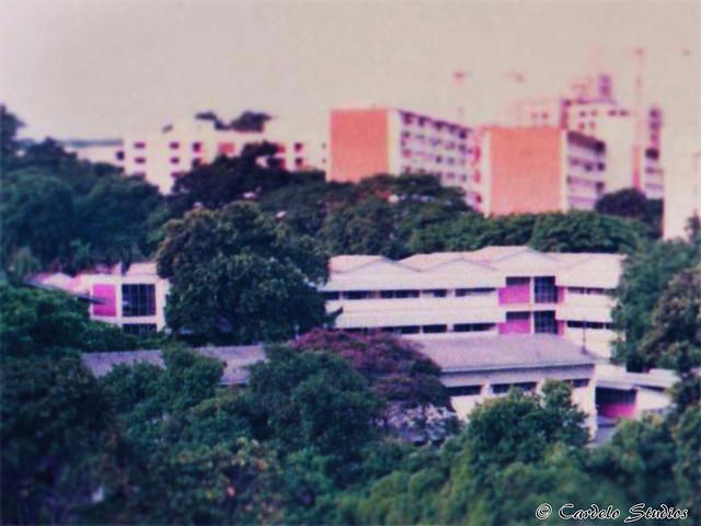 Buona Vista Secondary School 01