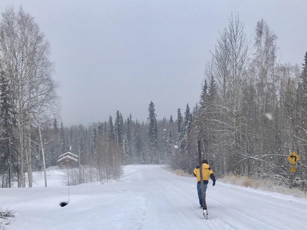USA - Alaska Image26