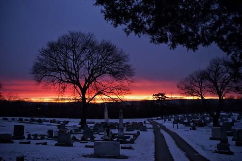 cemetery sunrise tree greenhillcemetery berryvilleva