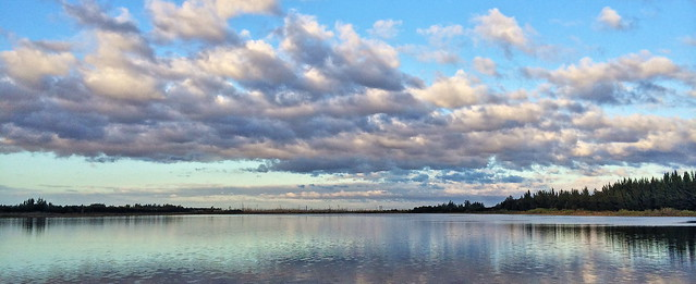 Harbour Lakes Wetlands 20130120