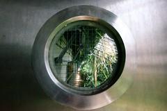 Jardin Botanico, Madrid