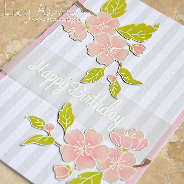 Birthday Blossom 2 by Lucy Abrams