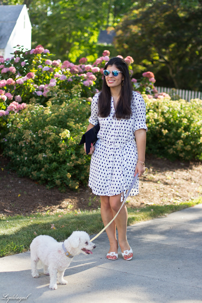 polka dot shirt dress, clare v clutch, dog walking outfit-5.jpg
