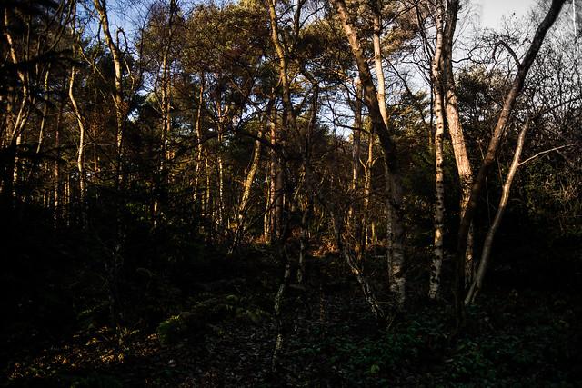 Malton & Woods (6 of 12), Nikon D800, AF Zoom-Nikkor 28-80mm f/3.3-5.6G