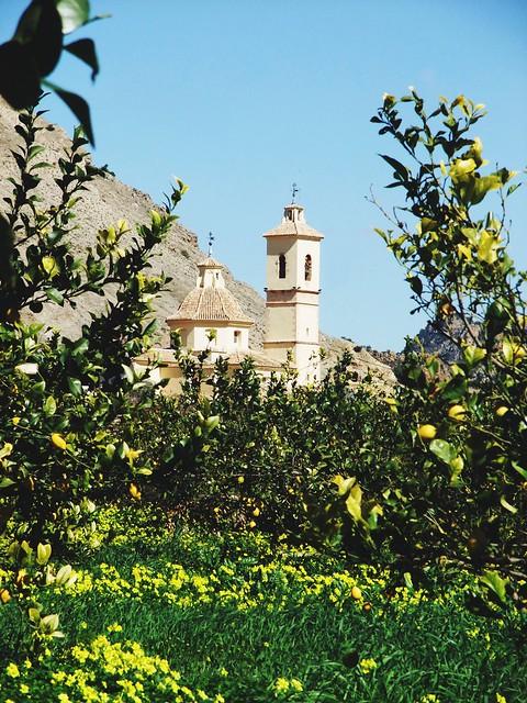 Lemon Orchard Ricote, Murcia, Fujifilm FinePix F200EXR